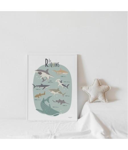 Affiche décorative Les Requins