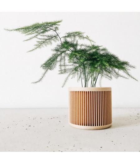 Cache pot design pour plantes vertes