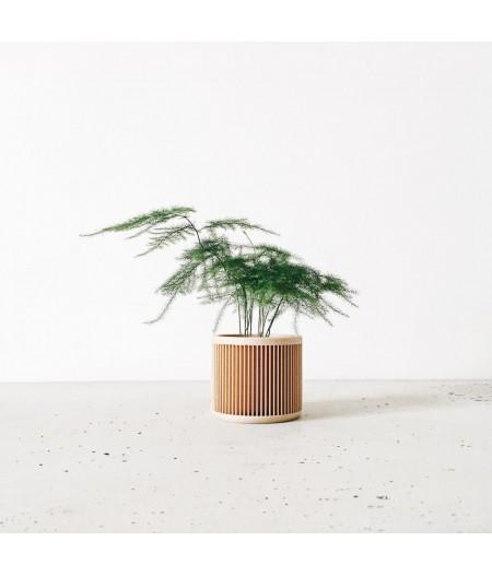 Petit pot plante d'intérieur fabriqué en France