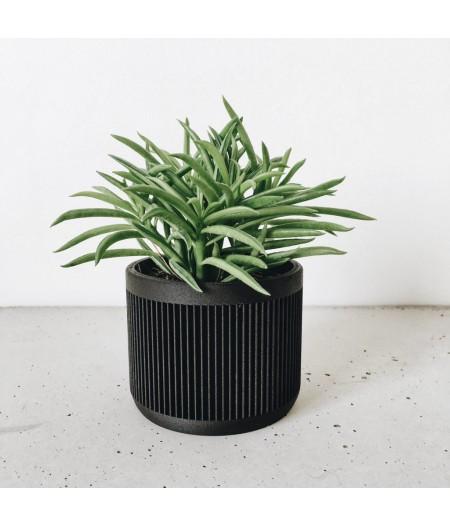 Pot noir design plante d'intérieur et captus