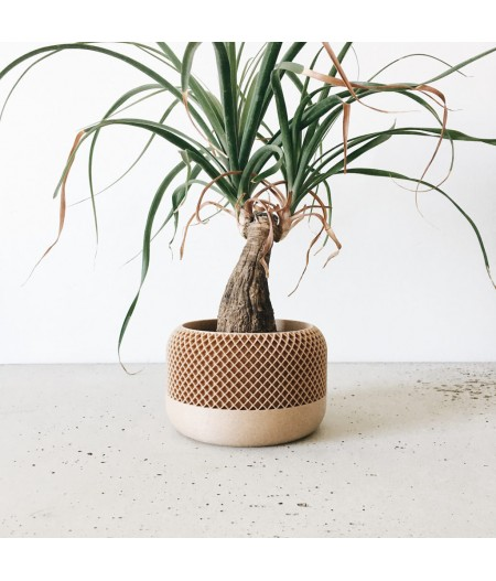 Cache pot made in France