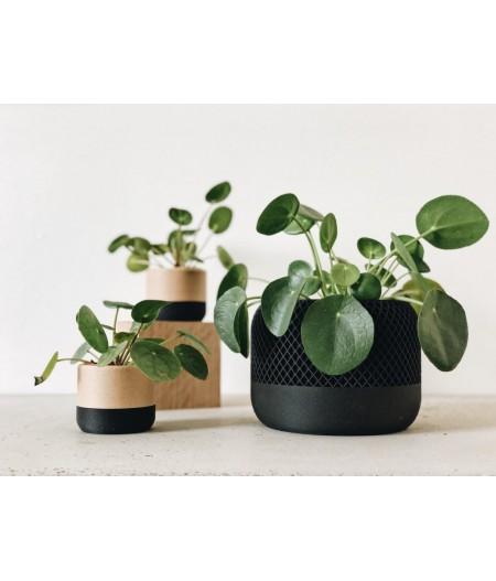 Ensemble de pot de décoration plante d'intérieur