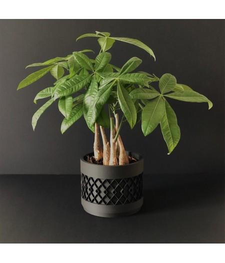 Pot Aztek noir pour plante d'intérieur