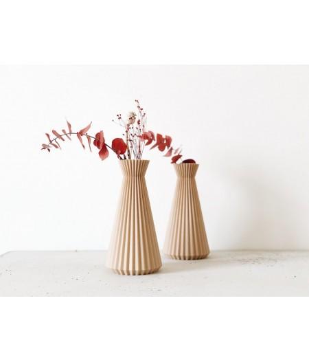 Superbe vase design pour fleurs séchées