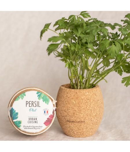 Persil vert bio en pot en liège